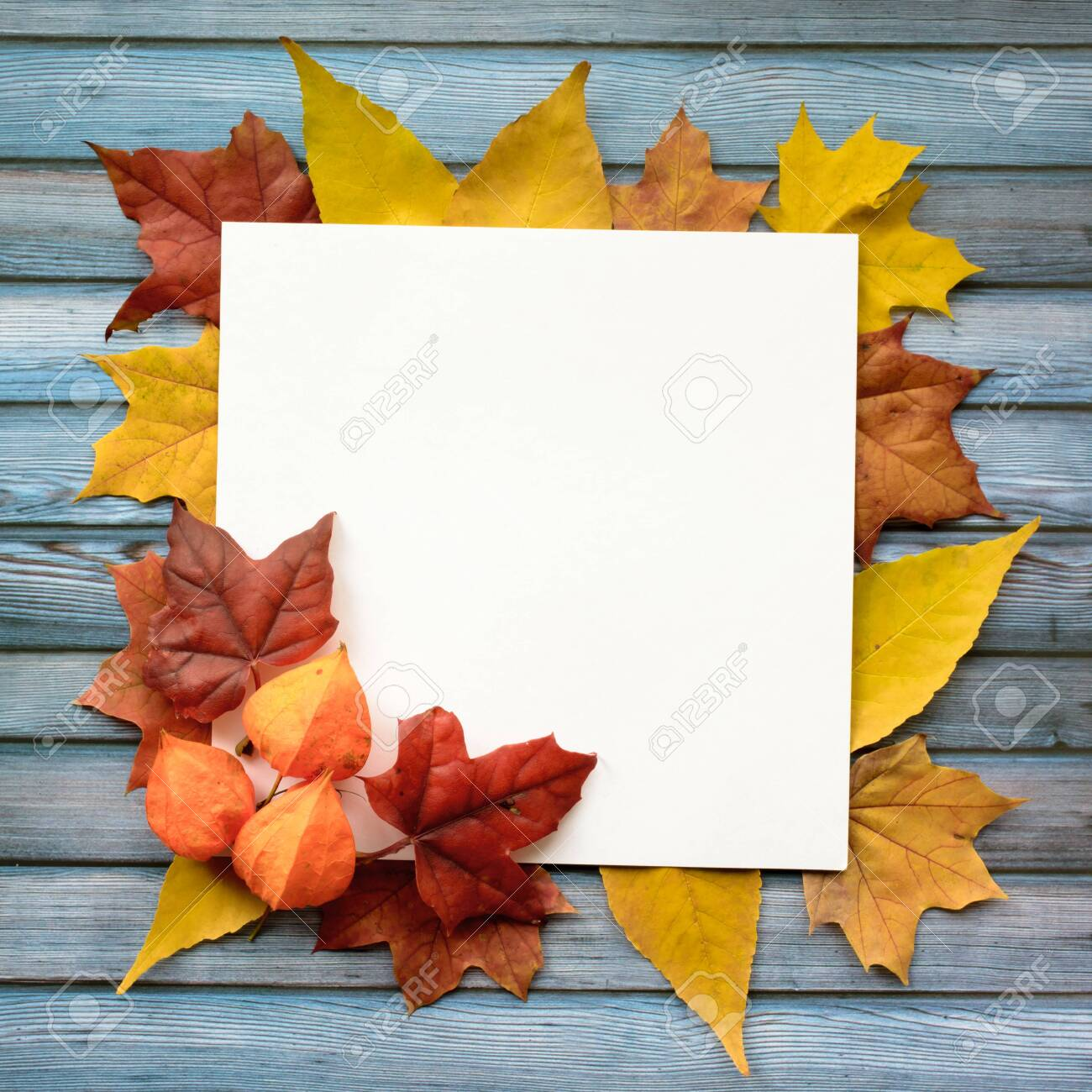 Autumn composition of maple leaves and square white paper. Flat lay, top view - 131705548