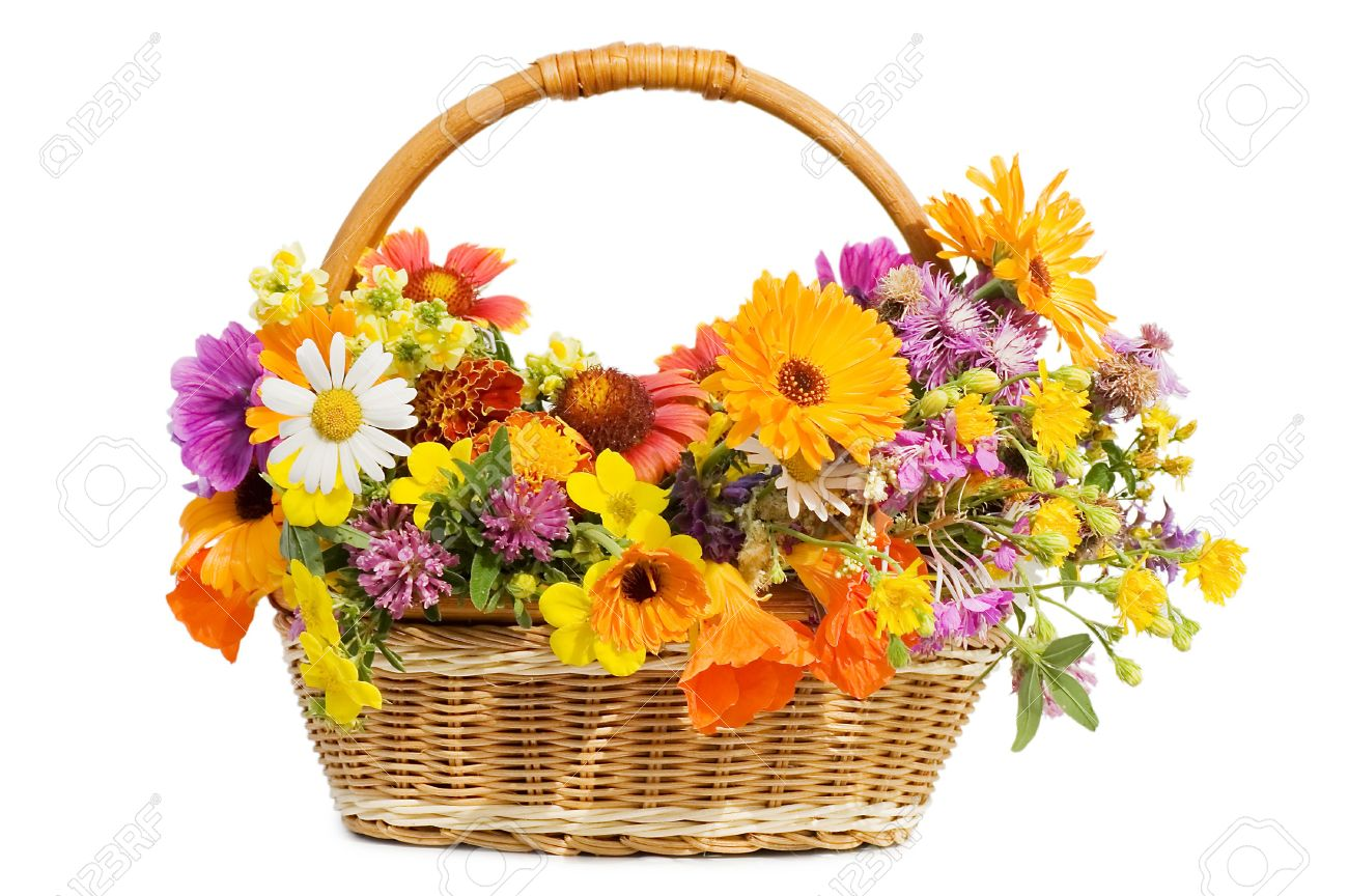 Beautiful Flowers In A Basket Isolated On White Stock Photo Picture