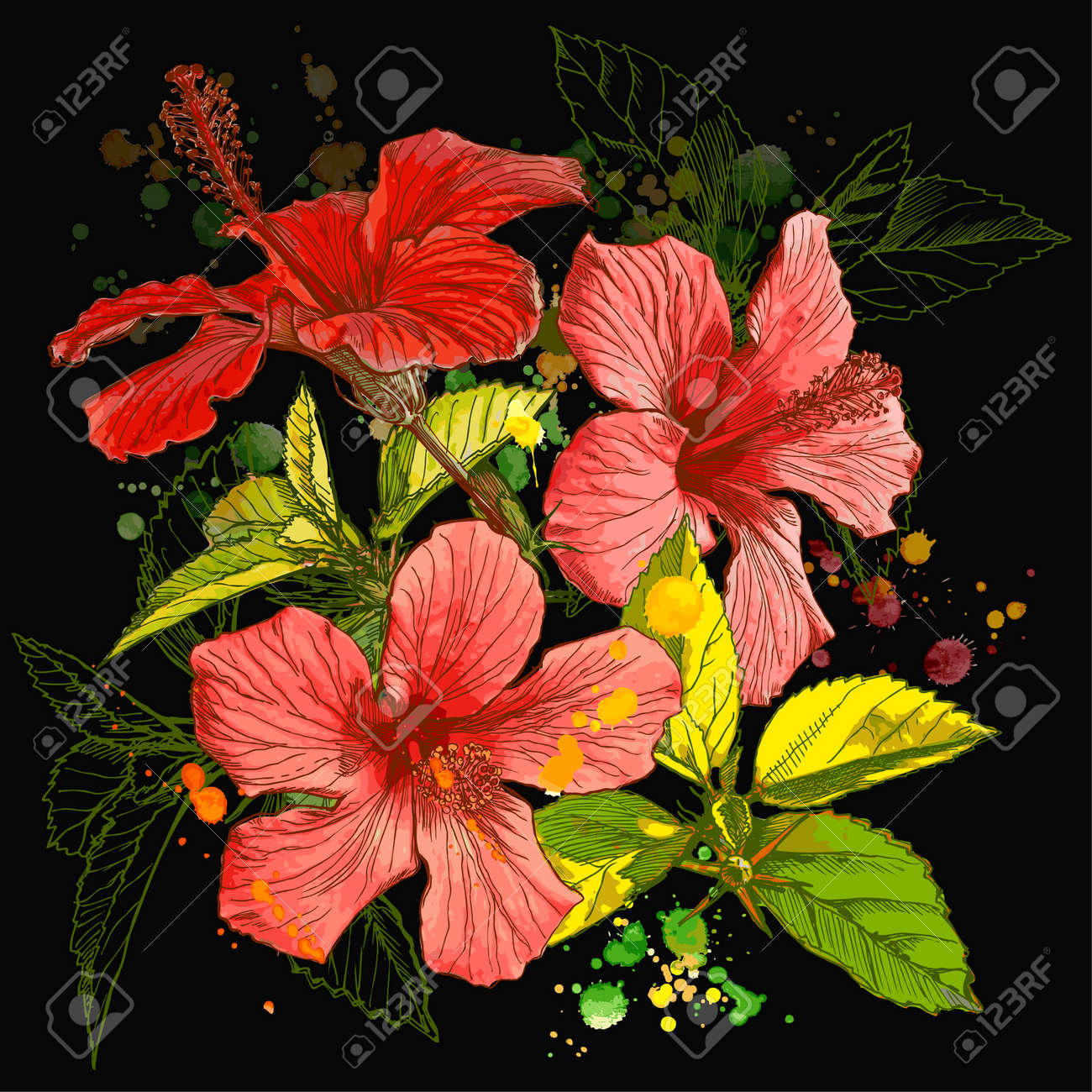 Hibiscus flower - vector watercolor paint. Elements on separate layers Stock Vector - 2893678
