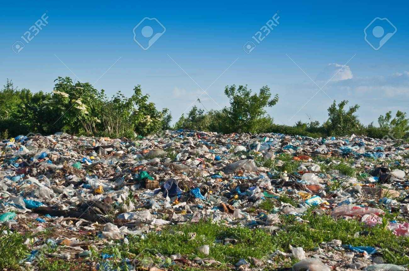 landfill on green plants in the photo - 29821820
