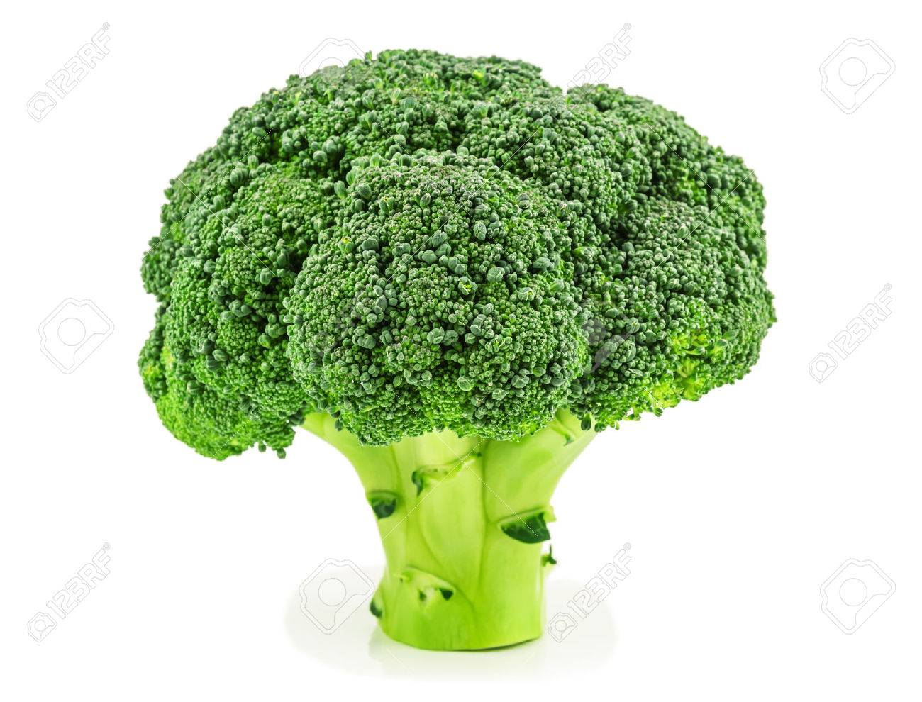 raw and ripe broccoli on white background - 51038412