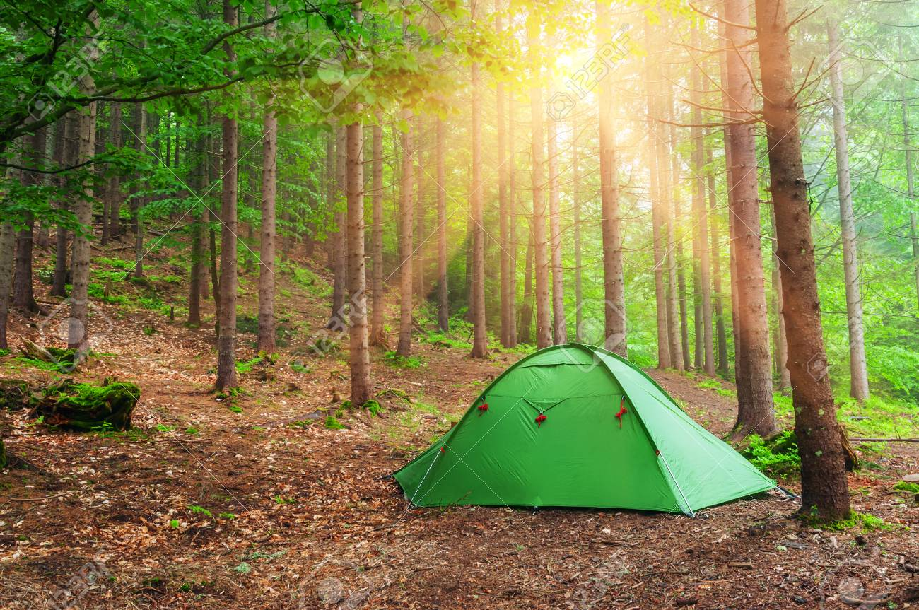 green tent in spring forest Stock Photo - 57797479 & Green Tent In Spring Forest Stock Photo Picture And Royalty Free ...