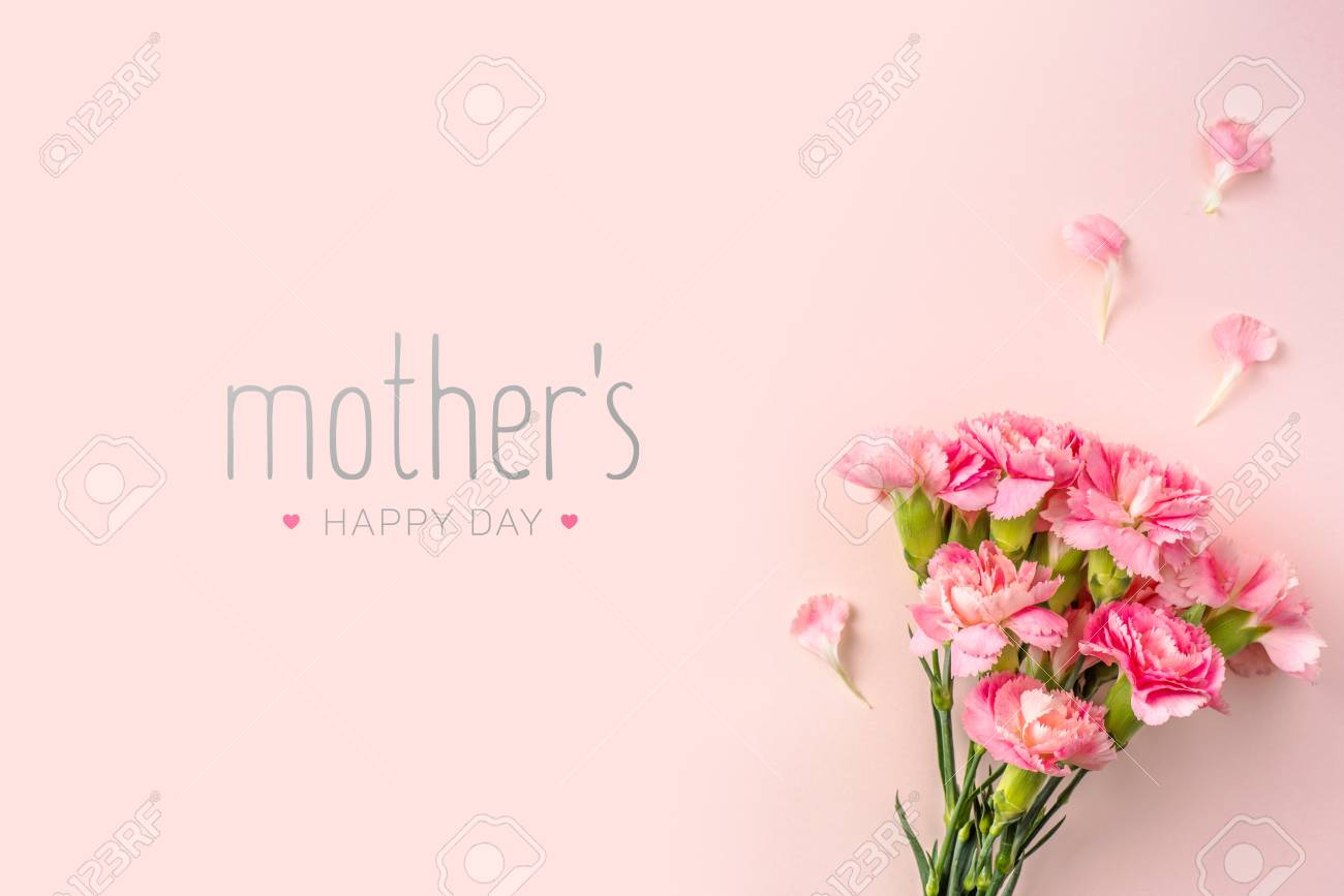 event design concept - top view of a bunch of pink carnation with greeting word on pink background for mothers day event with copy space for mock up - 120772331