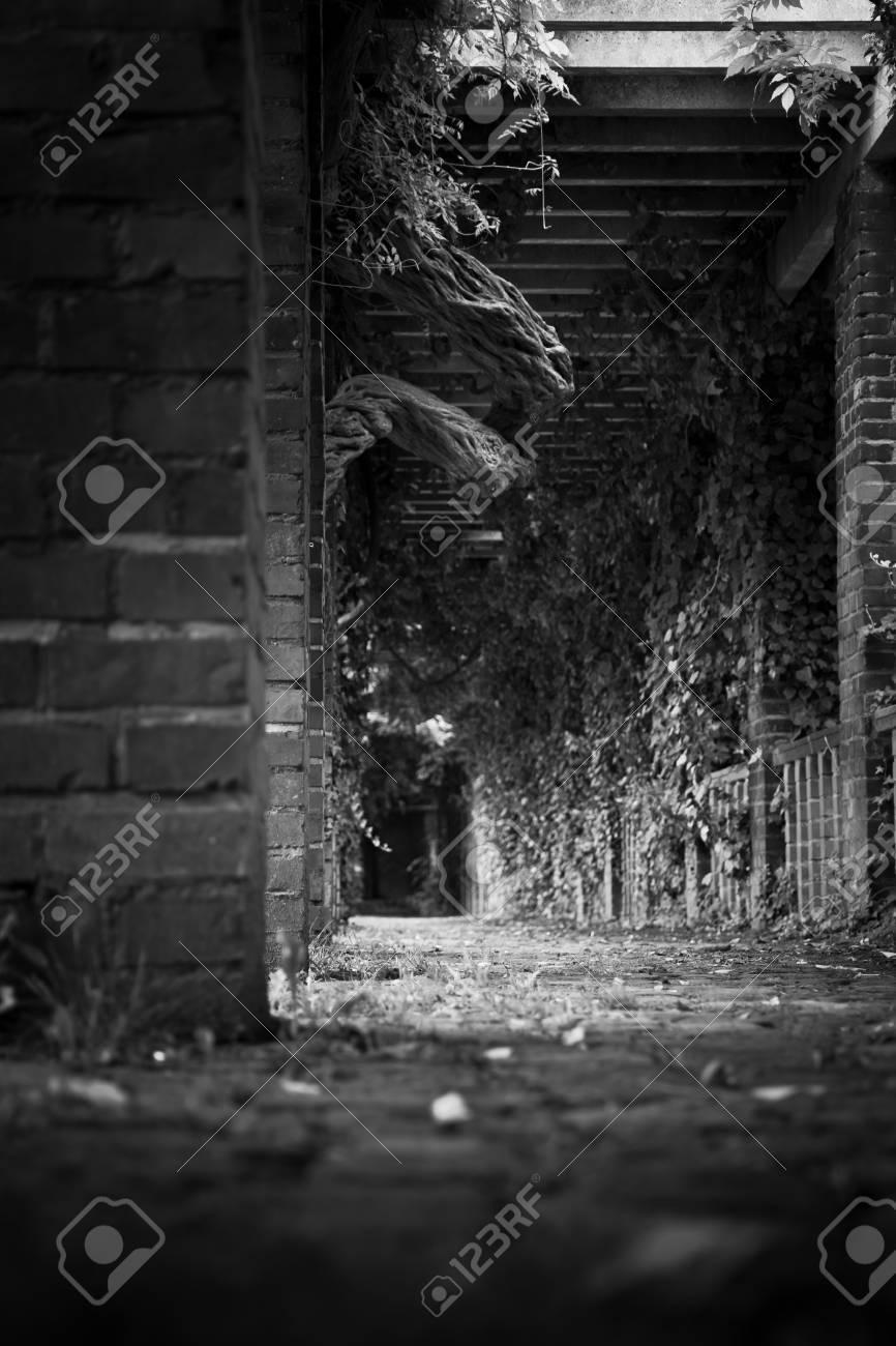 Entrée Noir Et Blanc hall d'entrée noir et blanc tourné à partir au ras du sol