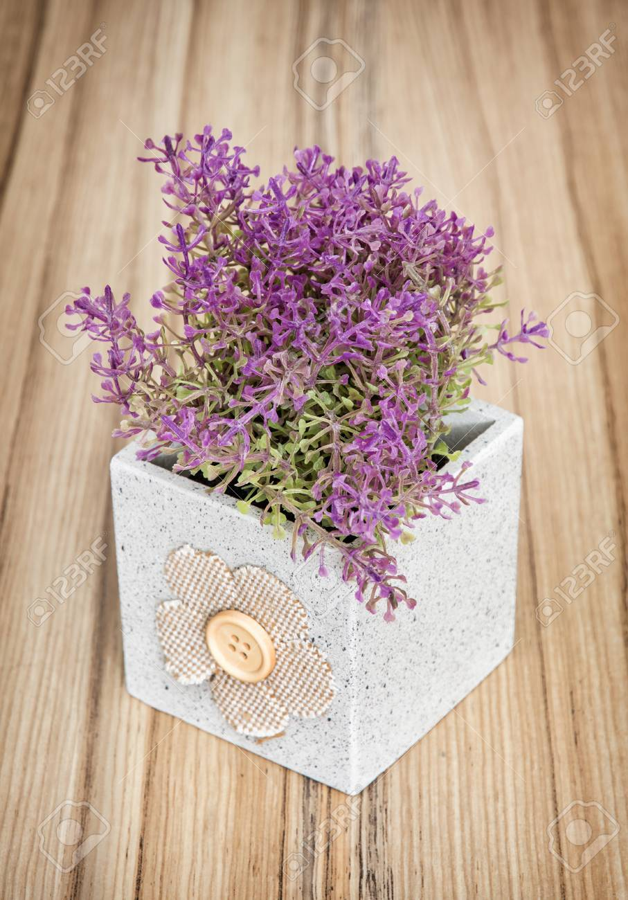 Kleine Dekorative Topfpflanze Auf Dem Hölzernen Hintergrund. Haus ...