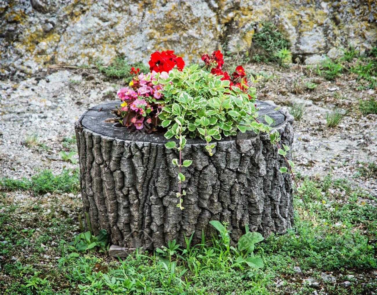 Flores Hermosas De La Decoracion En El Tronco De Un Arbol Colores