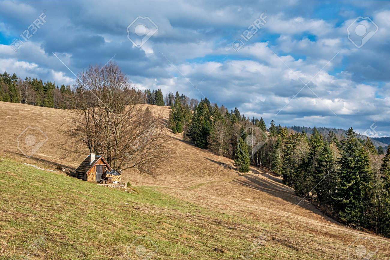 Wooden cottage, Big Fatra mountains, Slovak republic. Seasonal natural scene. Travel destination. Hiking theme. - 169797899