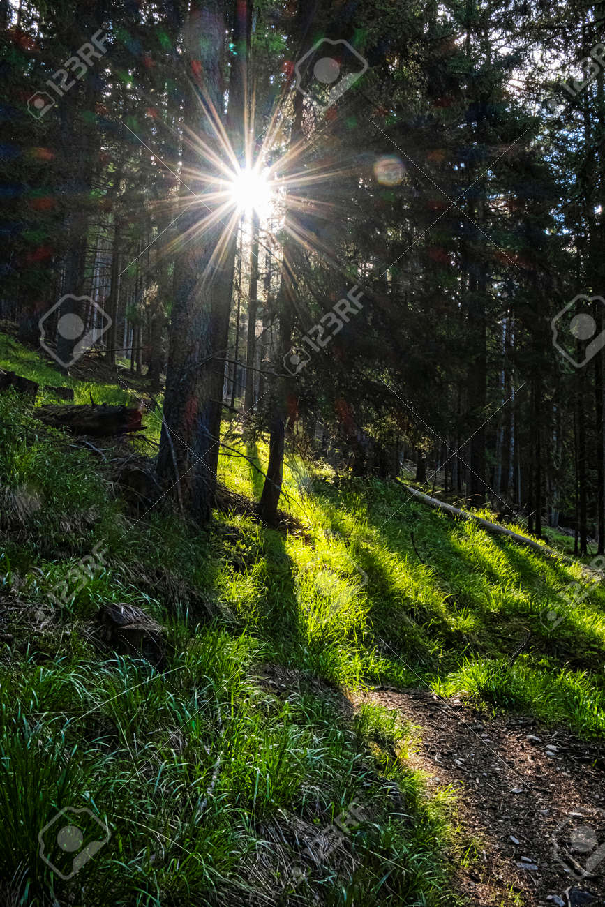 Sunrays in Western Tatras mountains, Slovak republic. Hiking theme. Seasonal natural scene. - 169797942