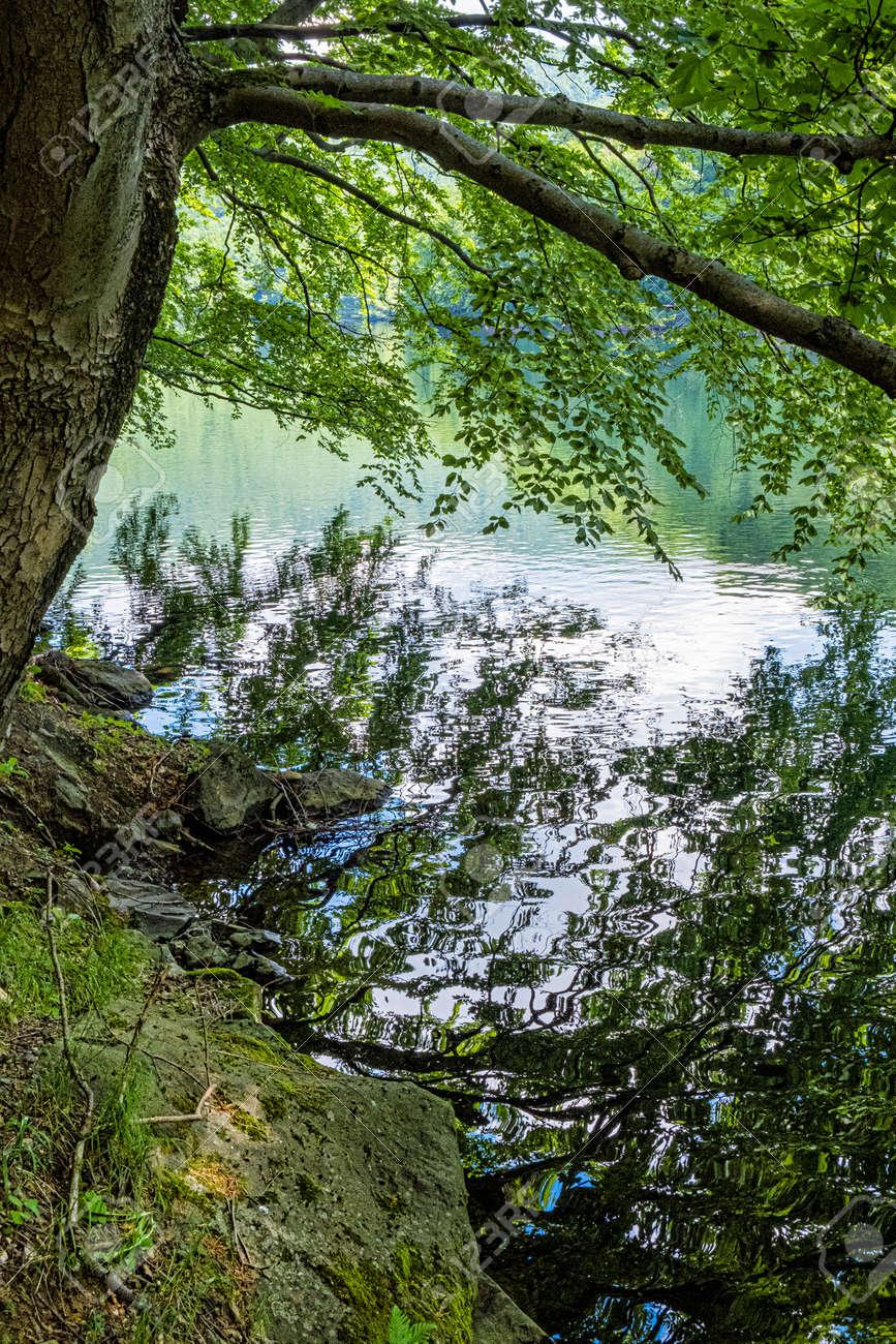 Morske oko lake, Vihorlat mountains, East Slovak republic. Seasonal natural scene. - 171269246