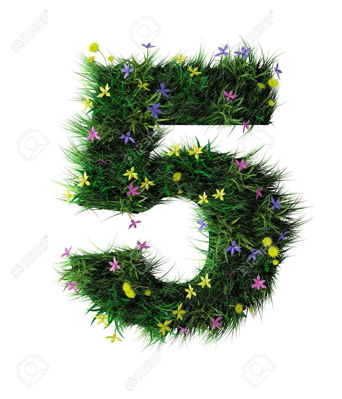 Grass and flower letter five Stock Photo - 6513009