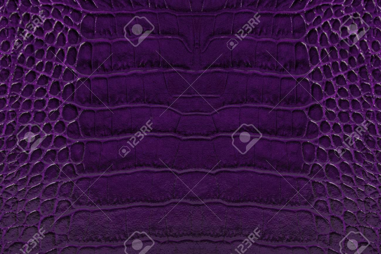 Couleur Violet Foncé Gaufré En Cuir Texture Fond Banque D'Images