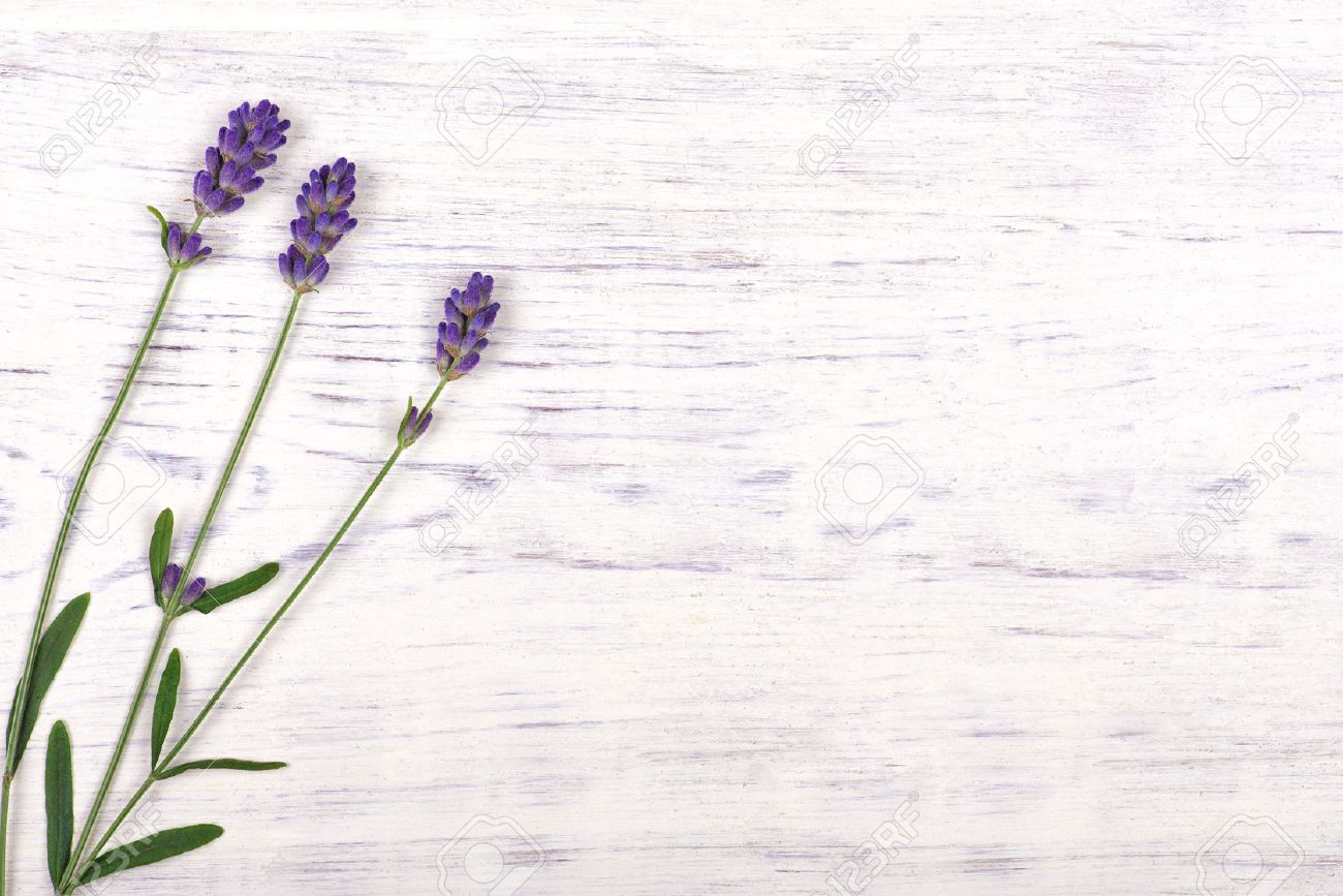 Lavender Flowers On White Wood Table Background, Top View Stock Photo    47098584