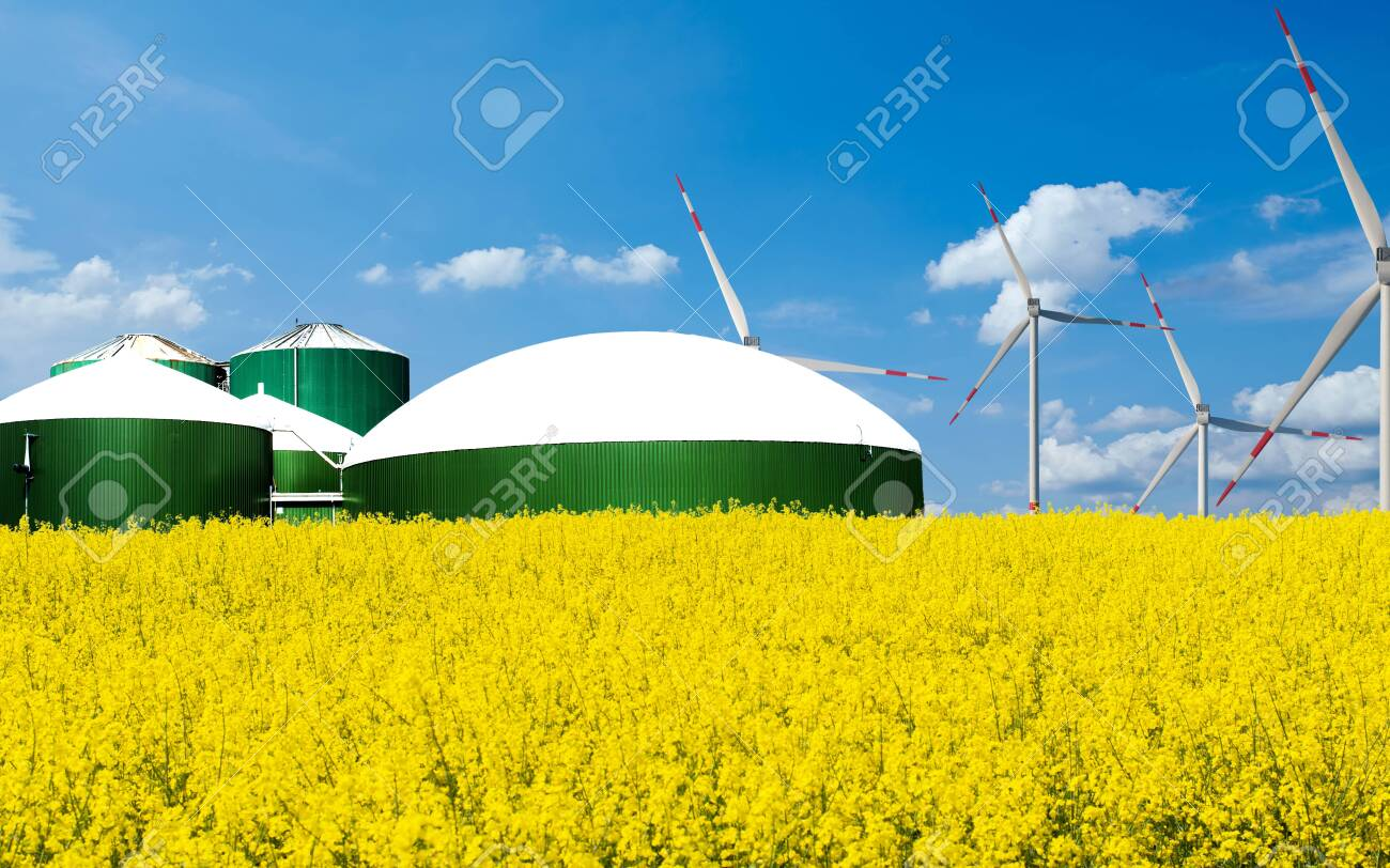 Biogas plant stands behind a arable field with blue sky - 135330284