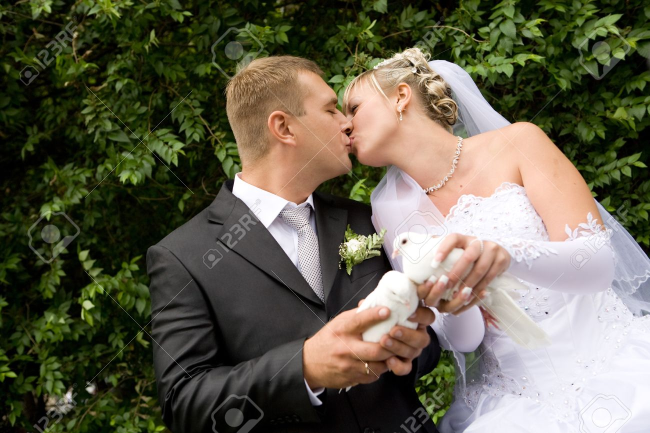two white pigeons in hands of bride and groom Stock Photo - 4443910