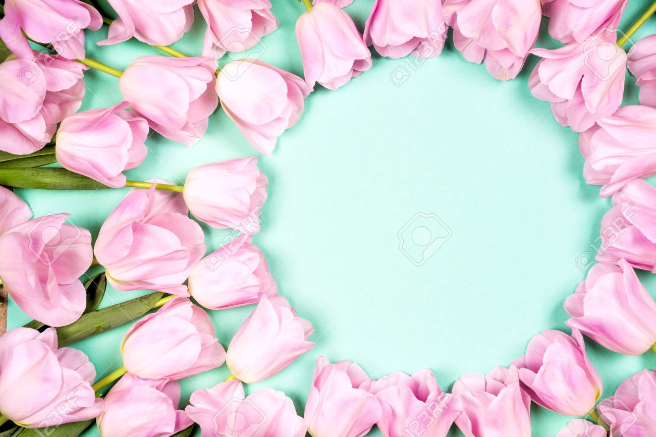 Spring Flowers Banner Bunch Of Pink Tulip Flowers On Blue Sky