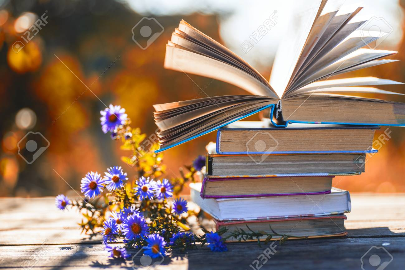 Open book on wooden table on natural background. Soft focus - 117601207