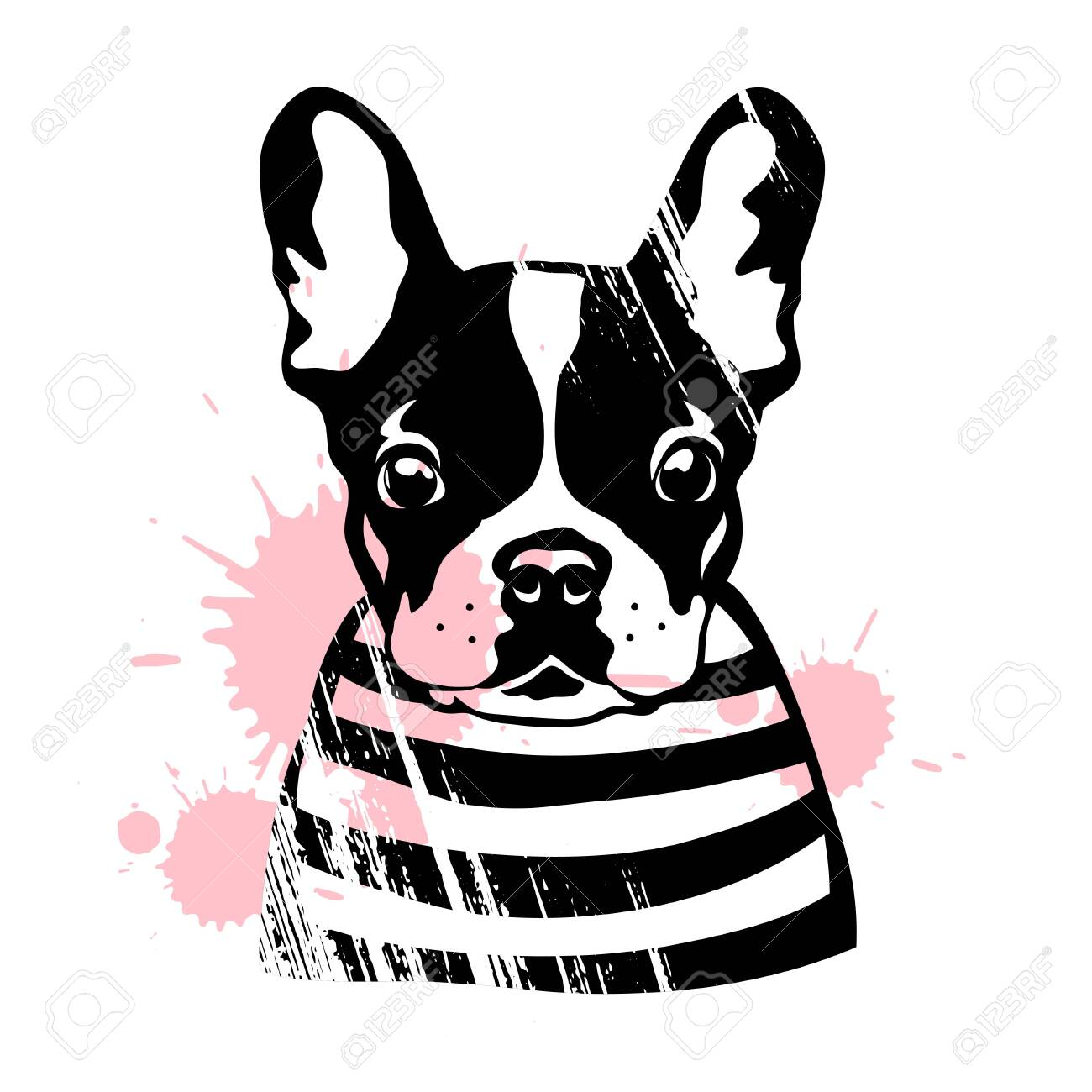 French bulldog. Cute black and white dog in a striped sweater. Vector illustration - 155851192