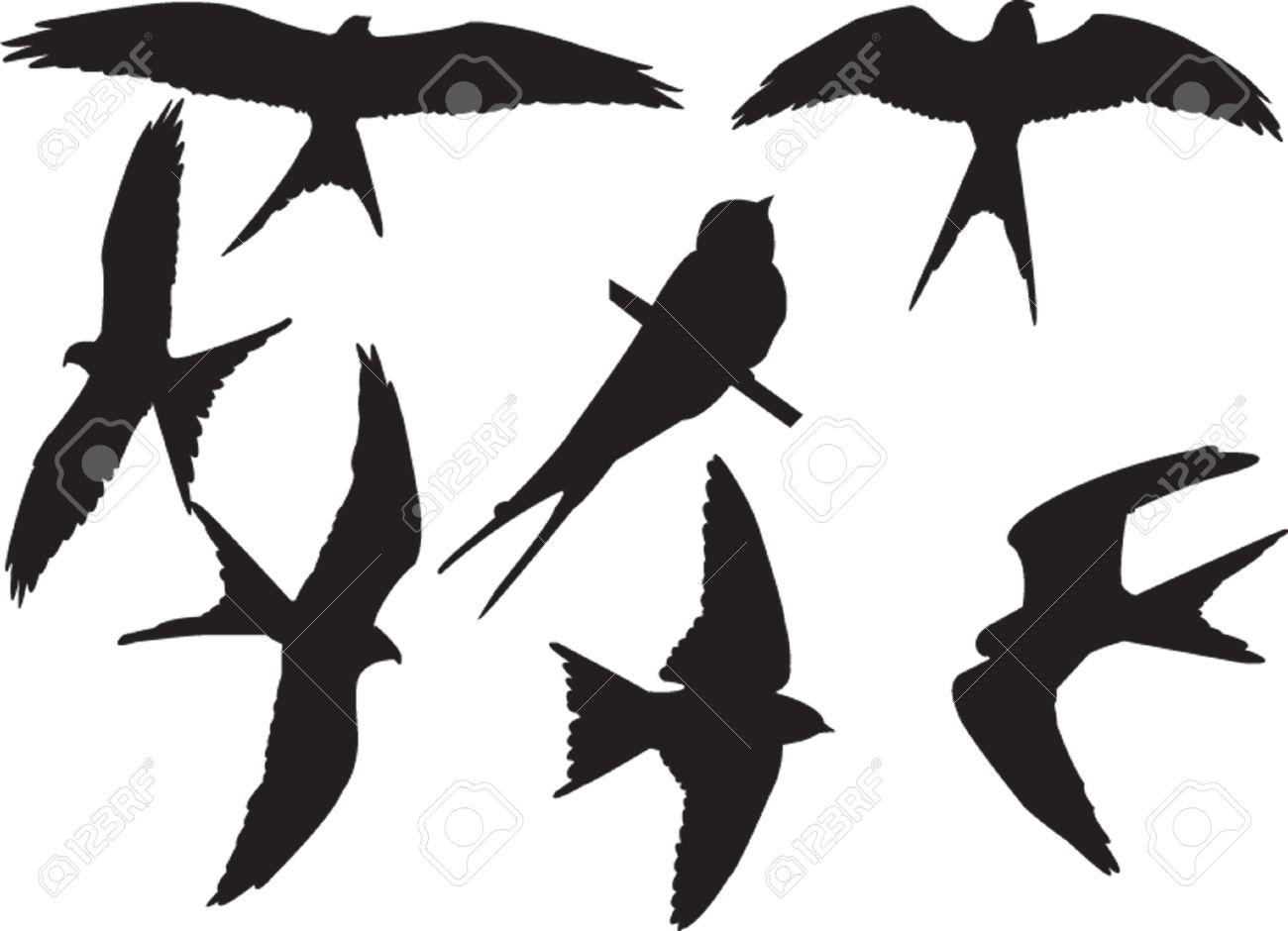 swallows silhouette collection - vector Stock Vector - 5157831