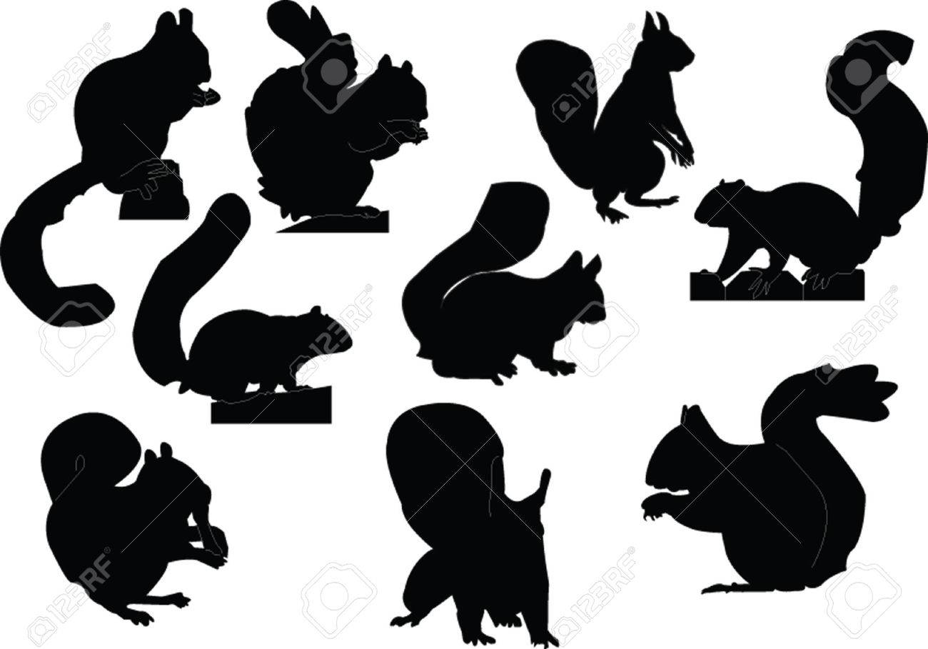 squirrel silhouette images  stock pictures royalty free squirrel  - squirrel silhouette squirrels collection  vector illustration