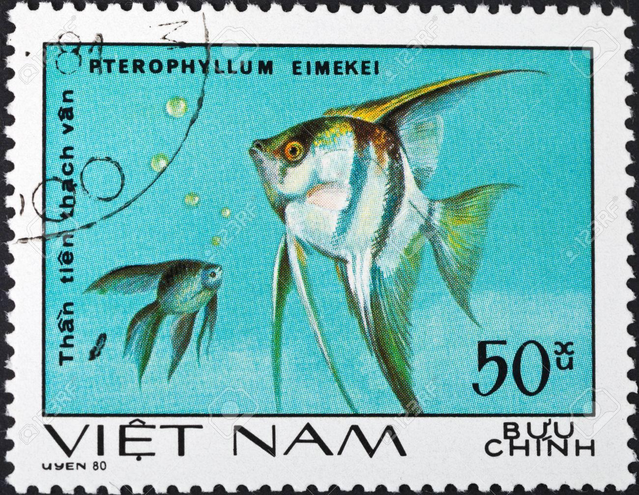 SOCIALIST REPUBLIC OF VIETNAM - CIRCA 1980: A postage stamp printed in the Vietnam shows pterophyllum eimekei - tropical angelfish, circa 1980 Stock Photo - 25386736