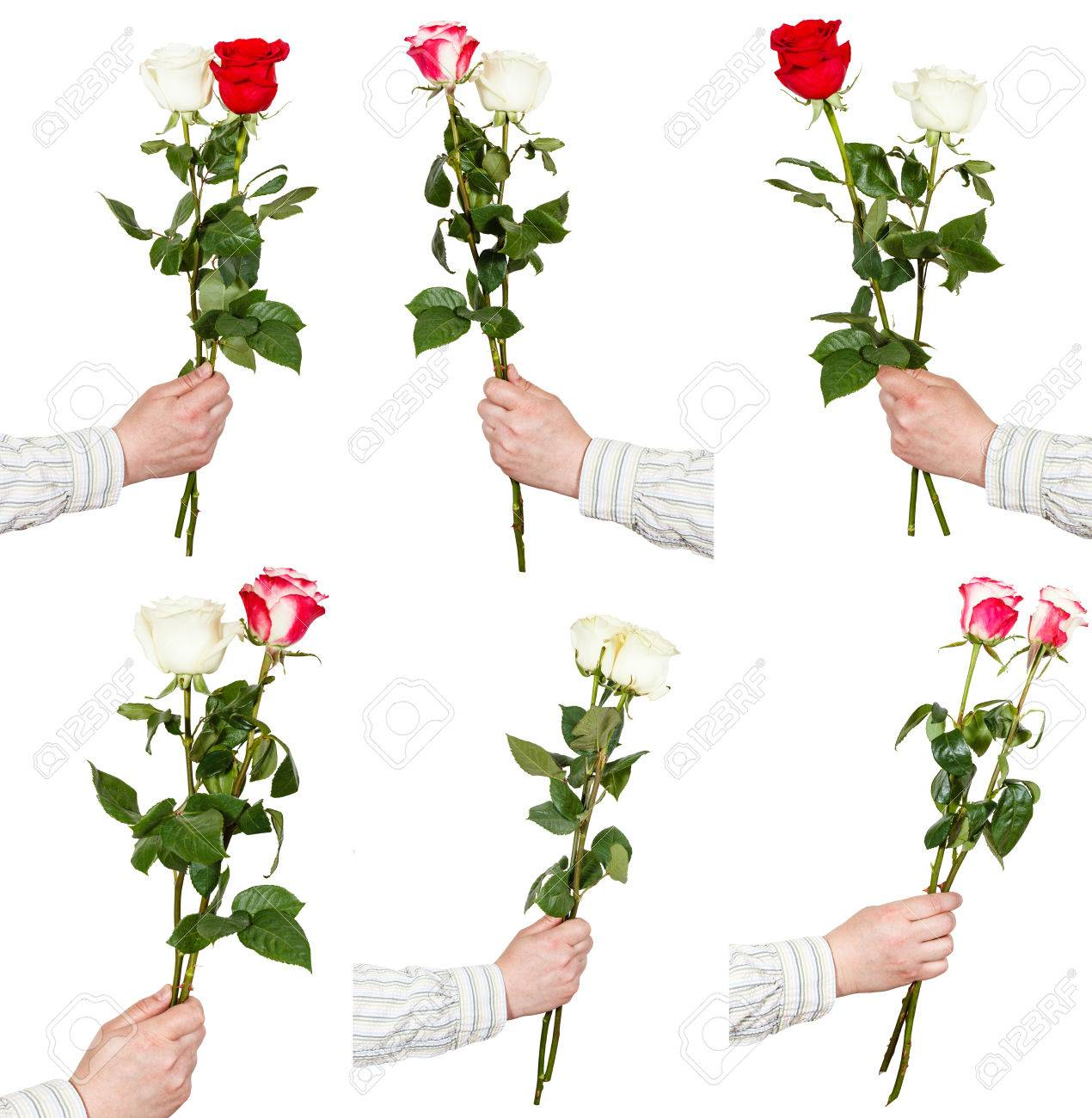 Set of two rose flower bouquets in hand isolated on white background set of two rose flower bouquets in hand isolated on white background stock photo 40587620 izmirmasajfo