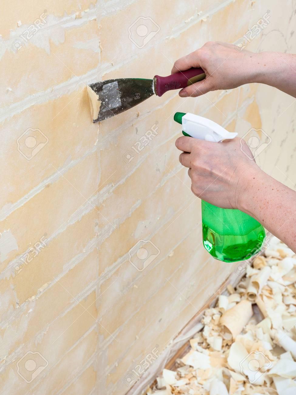Renovierung Der Wohnung, Tapezierung: Vorbereitung Der Wände. Entfernen Von  Nassen Alten Tapeten Mit