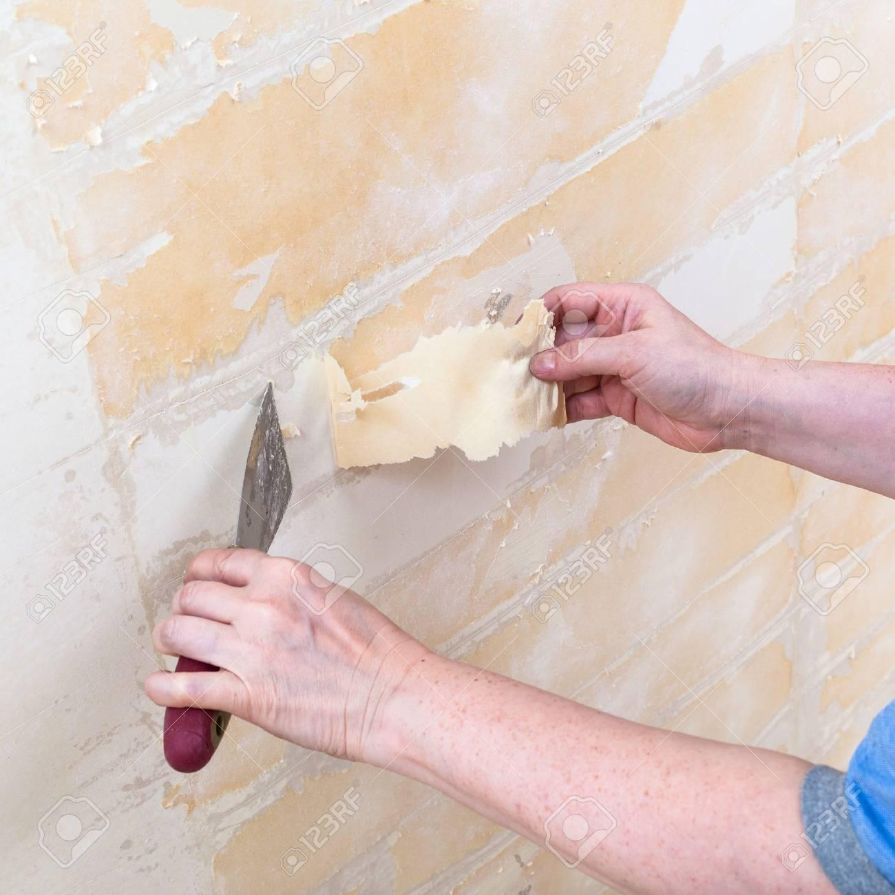 Wohnung Wand renovierung der wohnung: wand aus papierträger reinigung vor