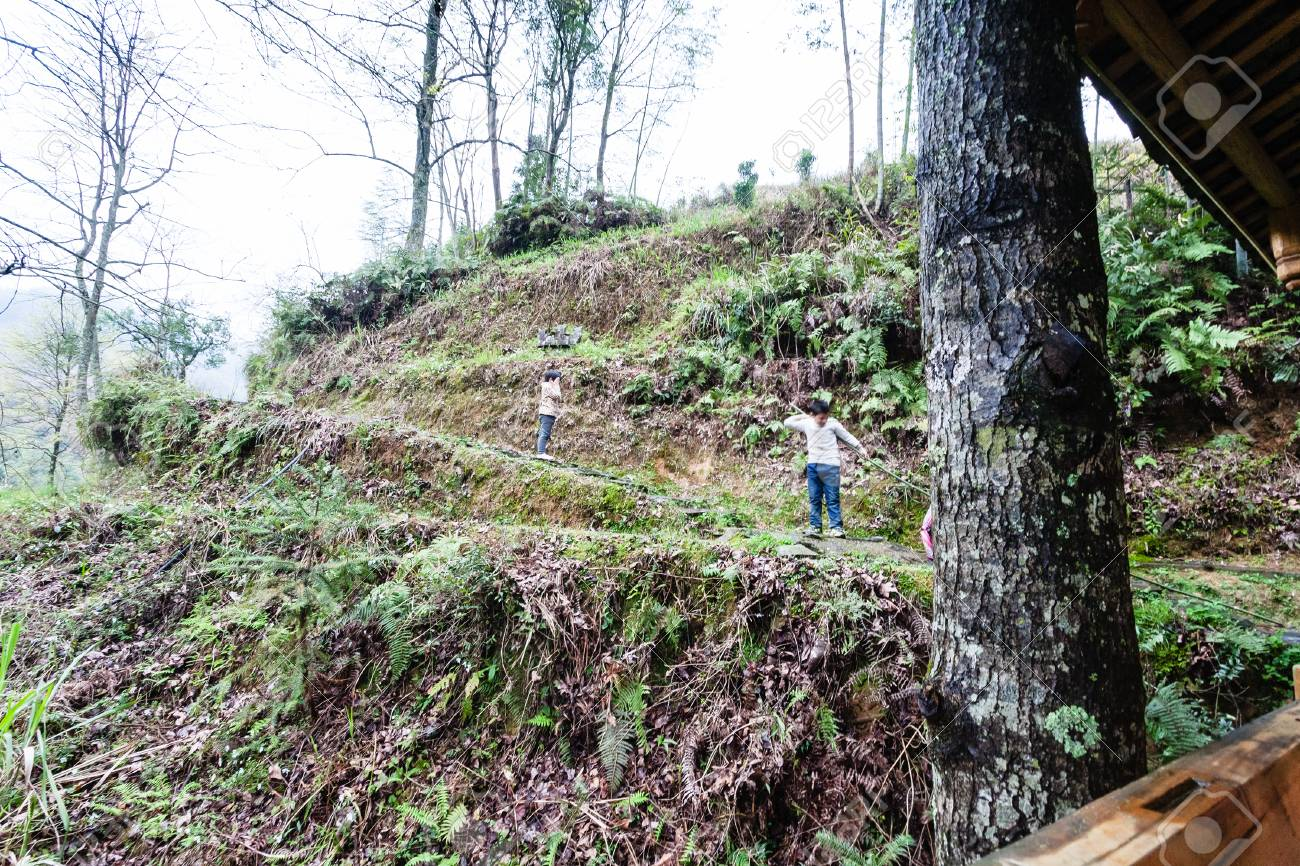Viajar A China Los Niños Del Campo Van A La Escuela En Una Colina Verde Cerca Del Pueblo De Dazhai En El área De Las Terrazas De Arroz De Longsheng