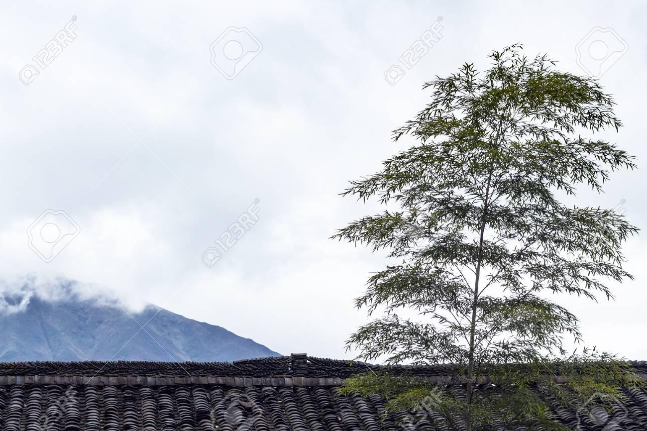 Viajar A China árbol De Bambú Sobre El Techo De La Casa De Campo En El Pueblo De Tiantouzhai Y Ver Las Nubes Sobre La Montaña En El área Terrazas De