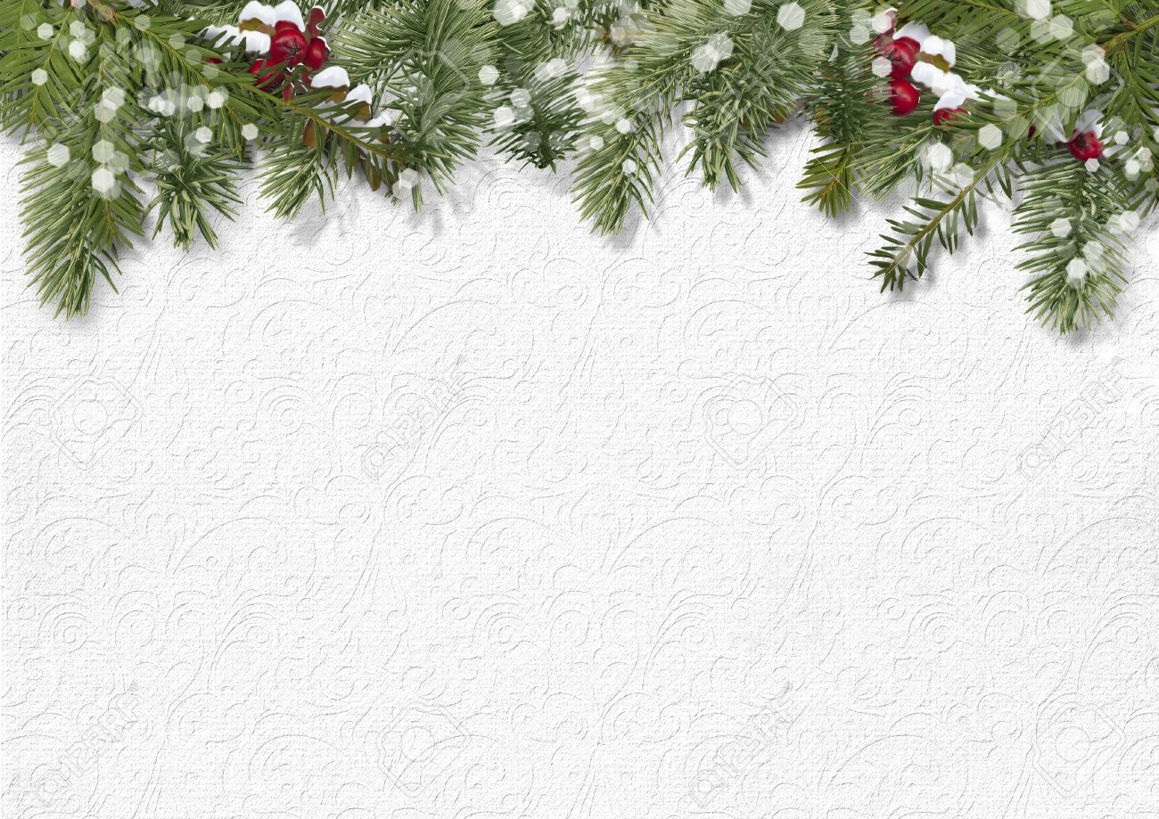 Christmas Background Pic.Christmas Background With Holly Firtree