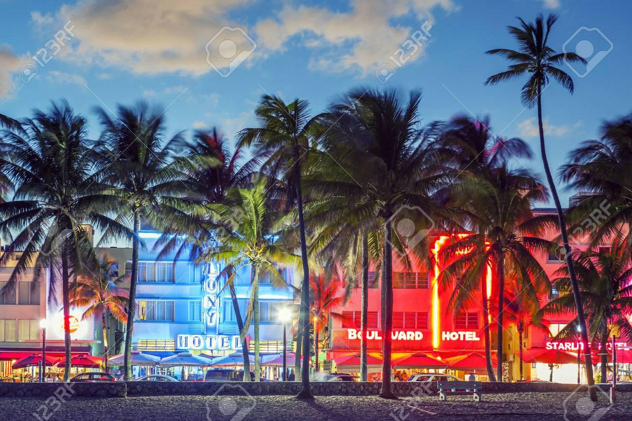 MIAMI, FLORIDA - JANUARY 24, 2014: Palm trees line Ocean Drive. The road is the main thoroughfare through South Beach. - 35735014