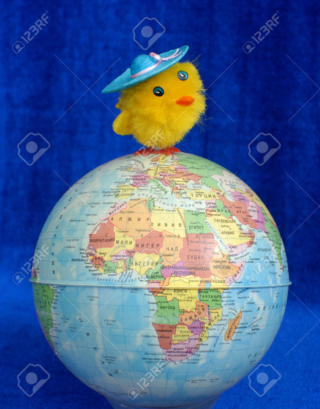 2e4fe2e0286d The Fluffy Toy Of A Chicken Costs At Top Of The Globe. Stock Photo ...
