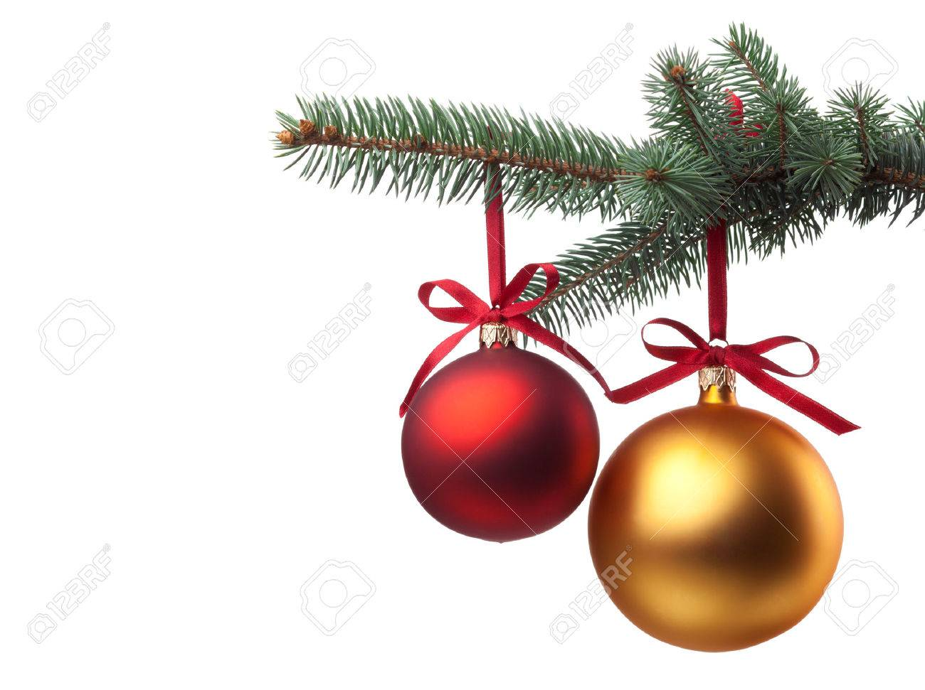 Christmas Baubles.Christmas Baubles With Curly Ribbon On Christmas Tree Isolated