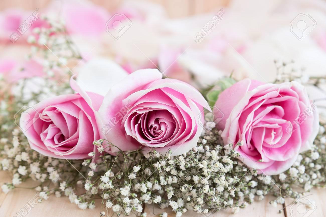 Roses Pour Amoureux Belle Fleur Concept D Amour Pour La Saint