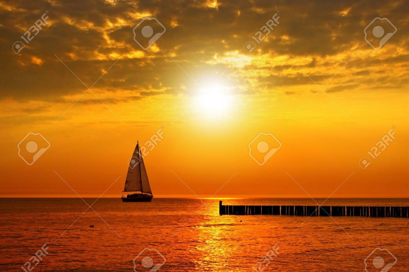 Golden sunset - 7379129