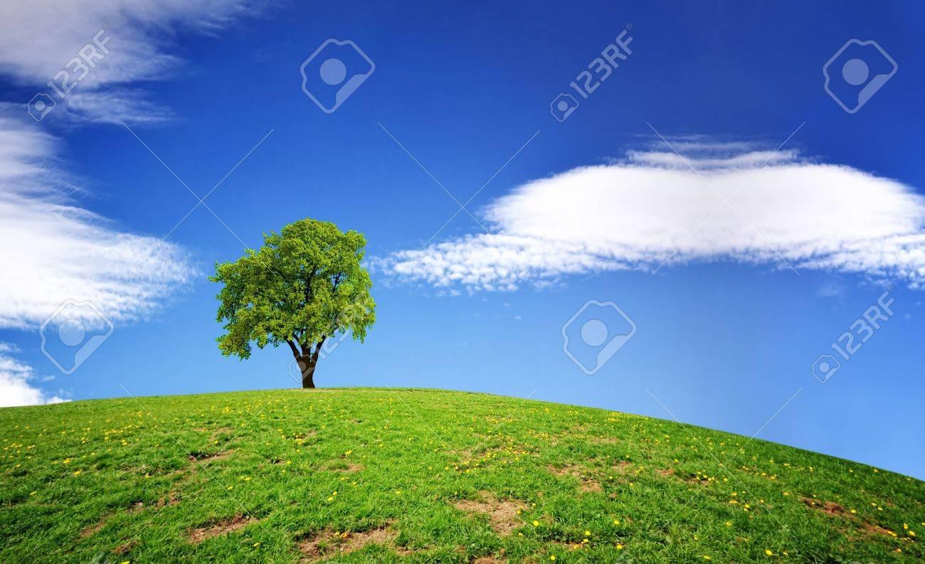 Green Planet Stock Photo - 8900327