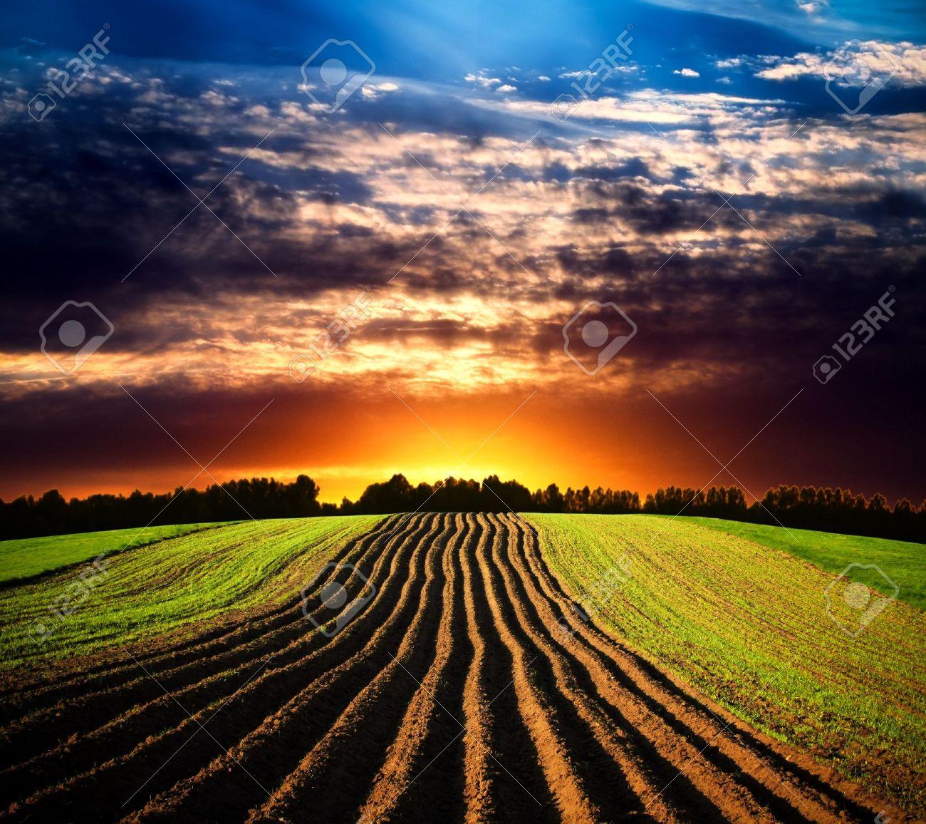 Landscape at sunset Stock Photo - 9571306