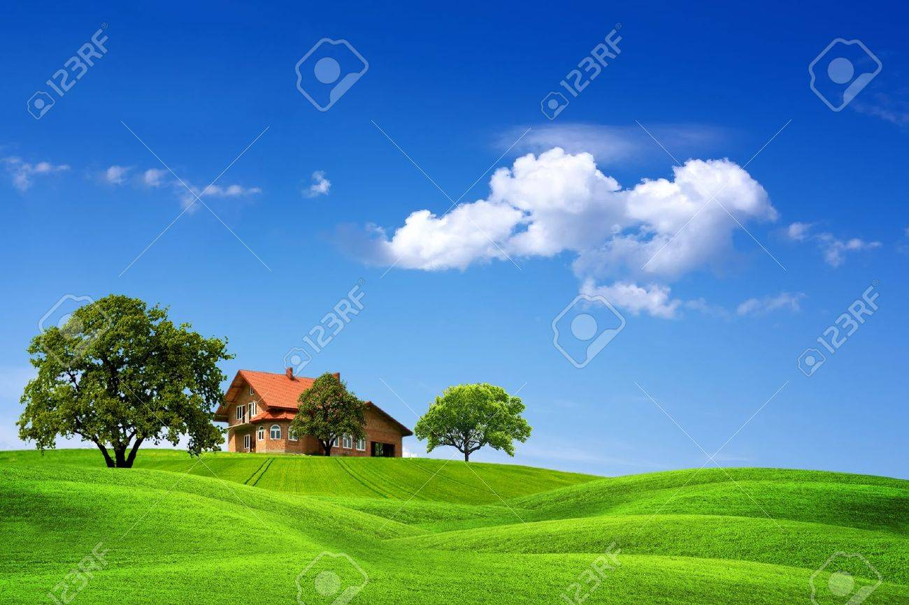 House and green landscape - 11008417