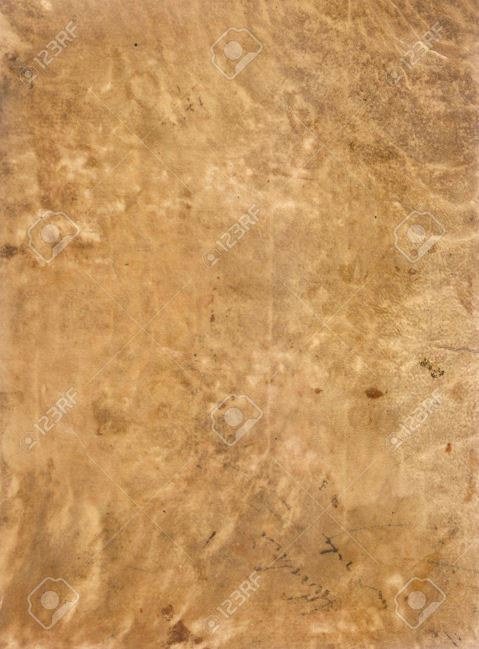 Original Antique Seventeenth Century Sheepskin PARCHMENT PAPER Texture With Space For Your Design Or Text