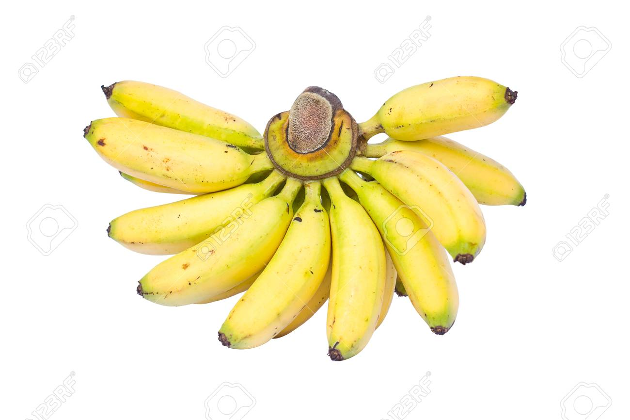 fresh bunch of bananas isolated on white background Stock Photo - 15330760