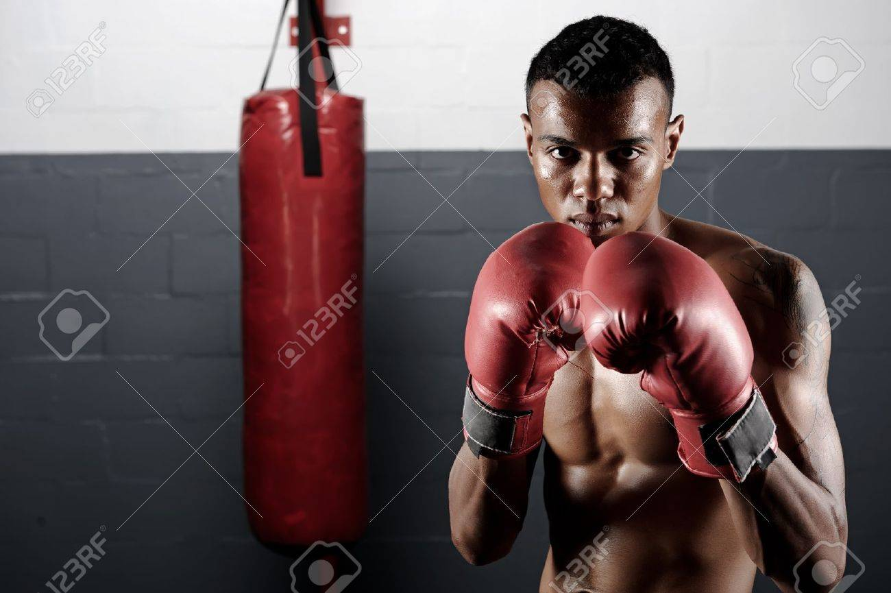 portrait of a confident young boxer in the gym Stock Photo - 12347006