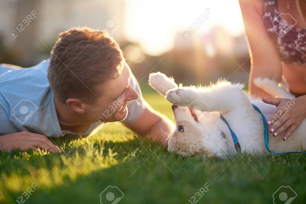 Man playing with puppy on grass with girlfriend, pet bonding best friend healthy outdoor lifestyle - 80991731