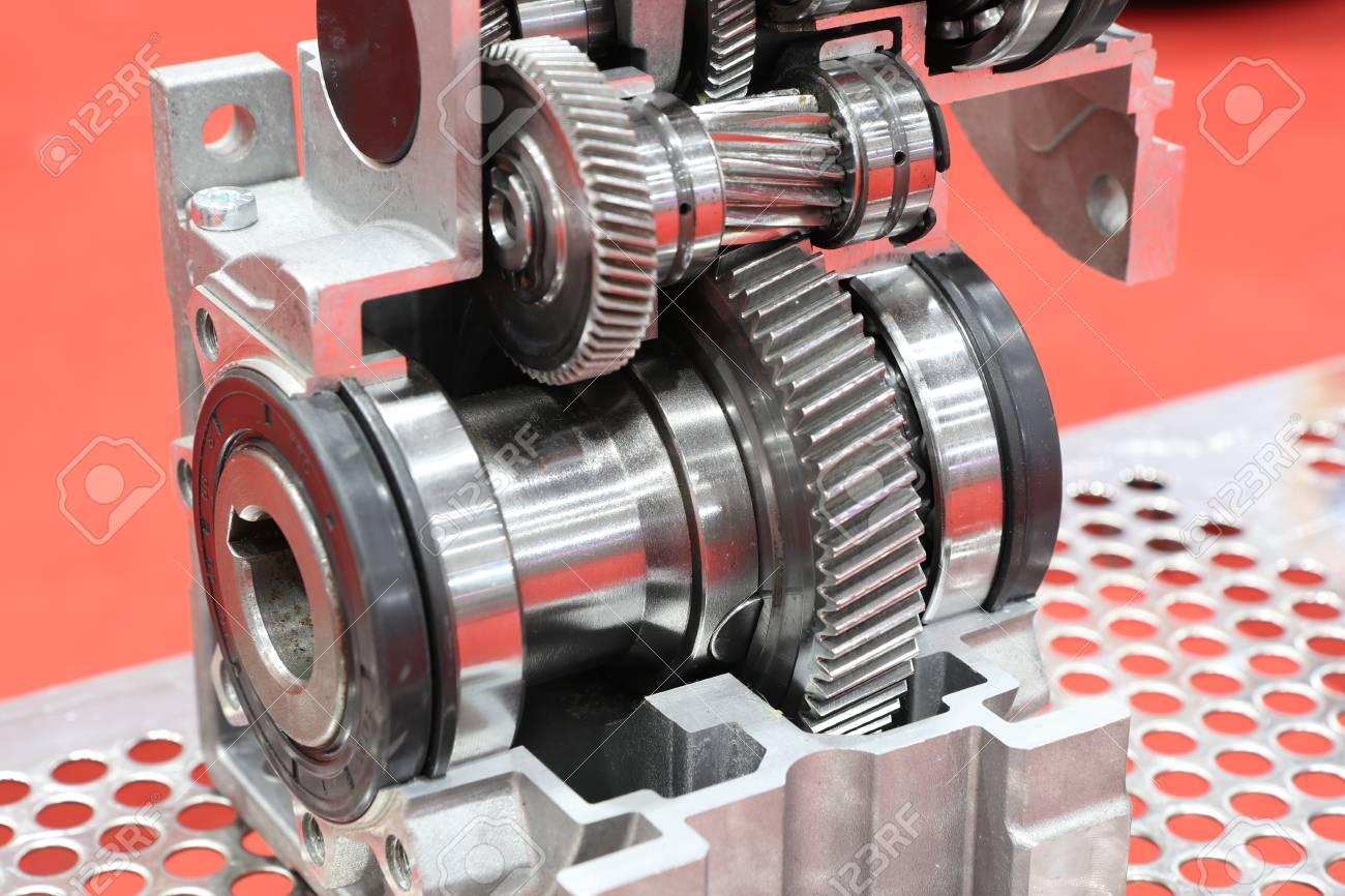 cross section of worm gear pump