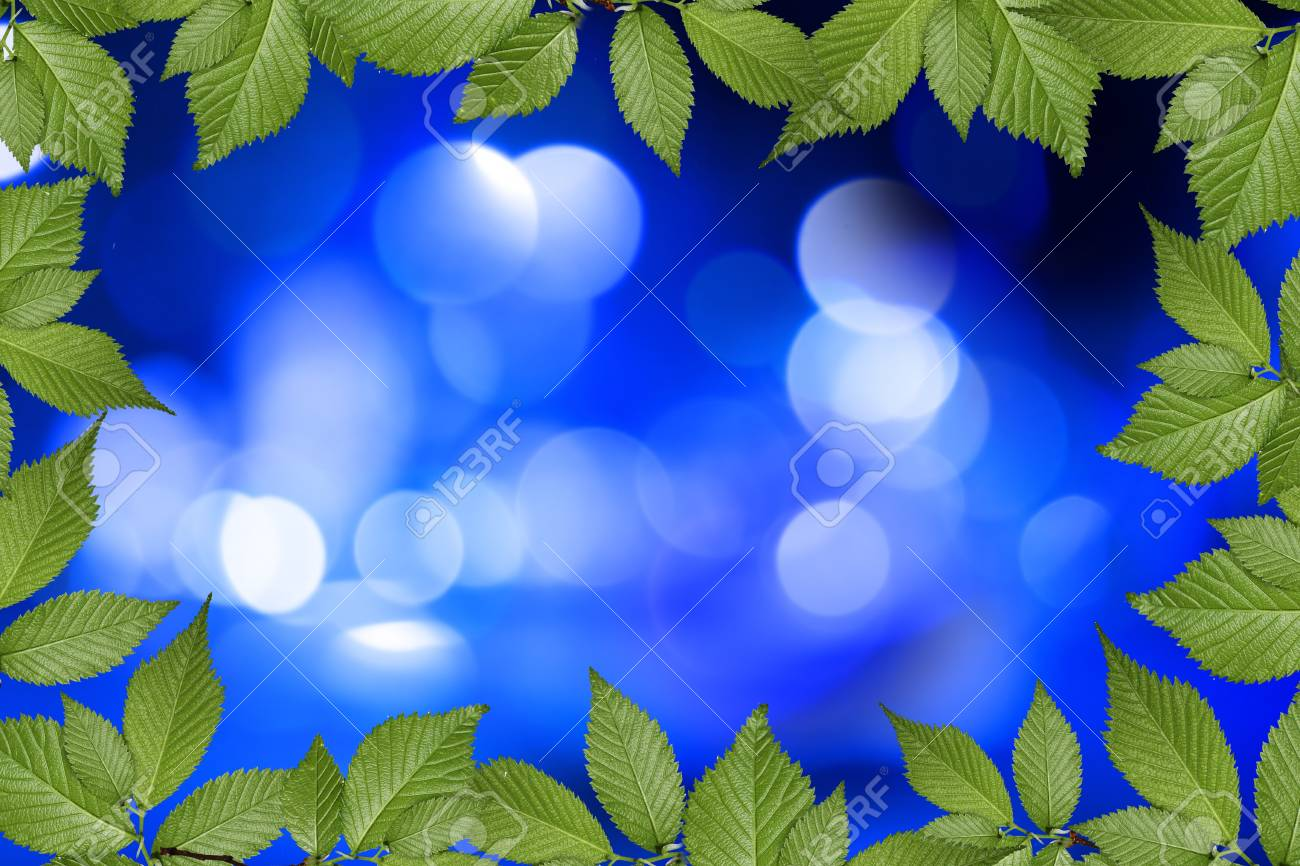 blue abstract background with plant frame Stock Photo - 10526386