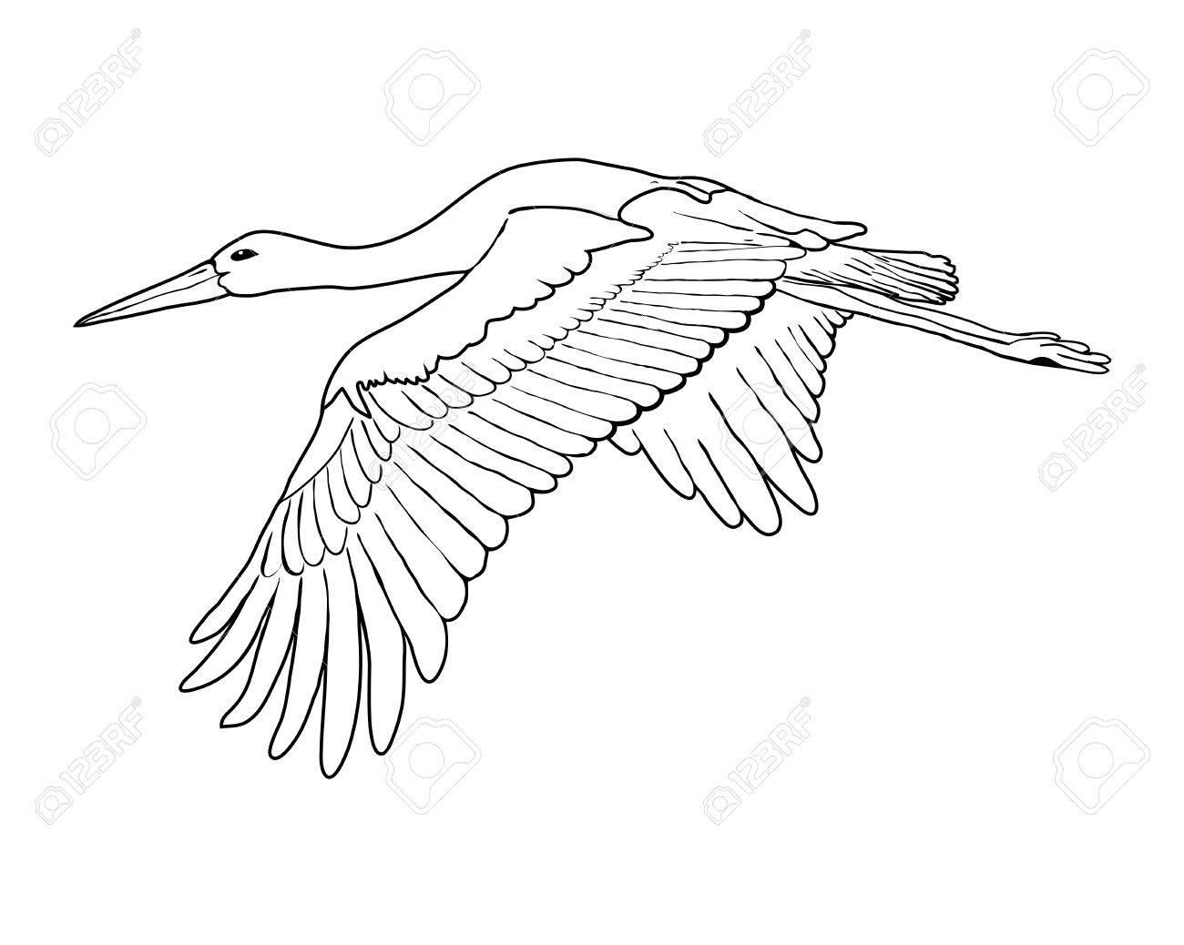 flying stork set outline vector illustration royalty free