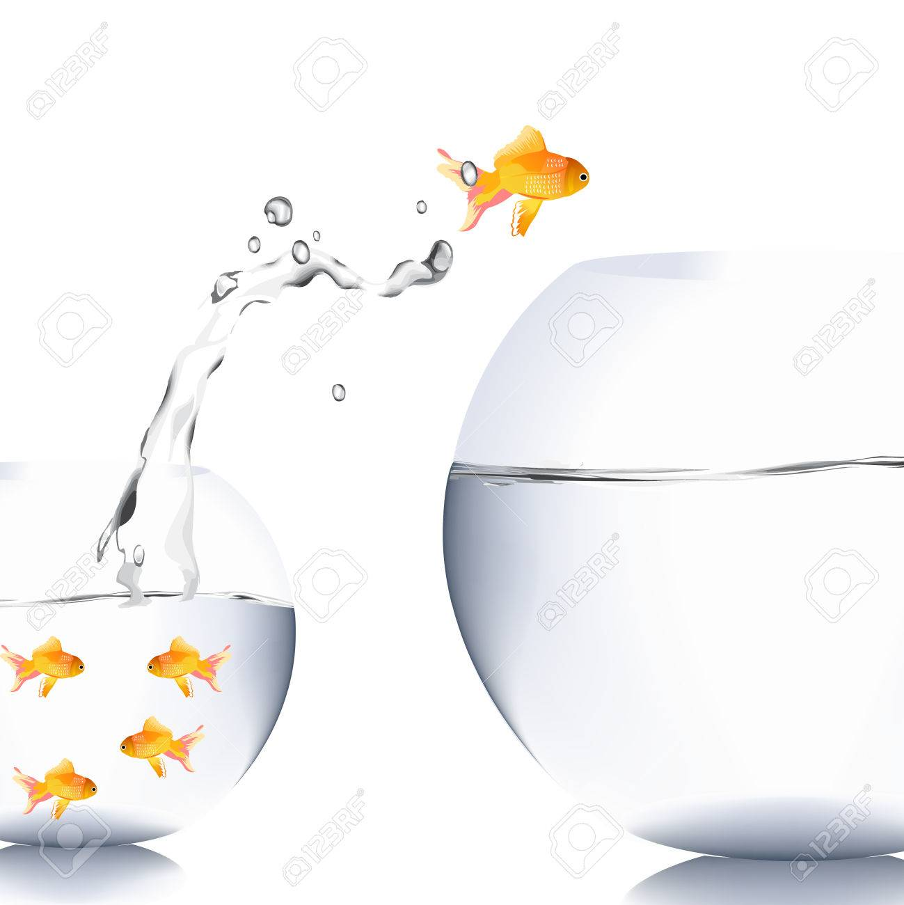 Fish Jump To The Big Aquarium Stock Photo Picture And Royalty Free