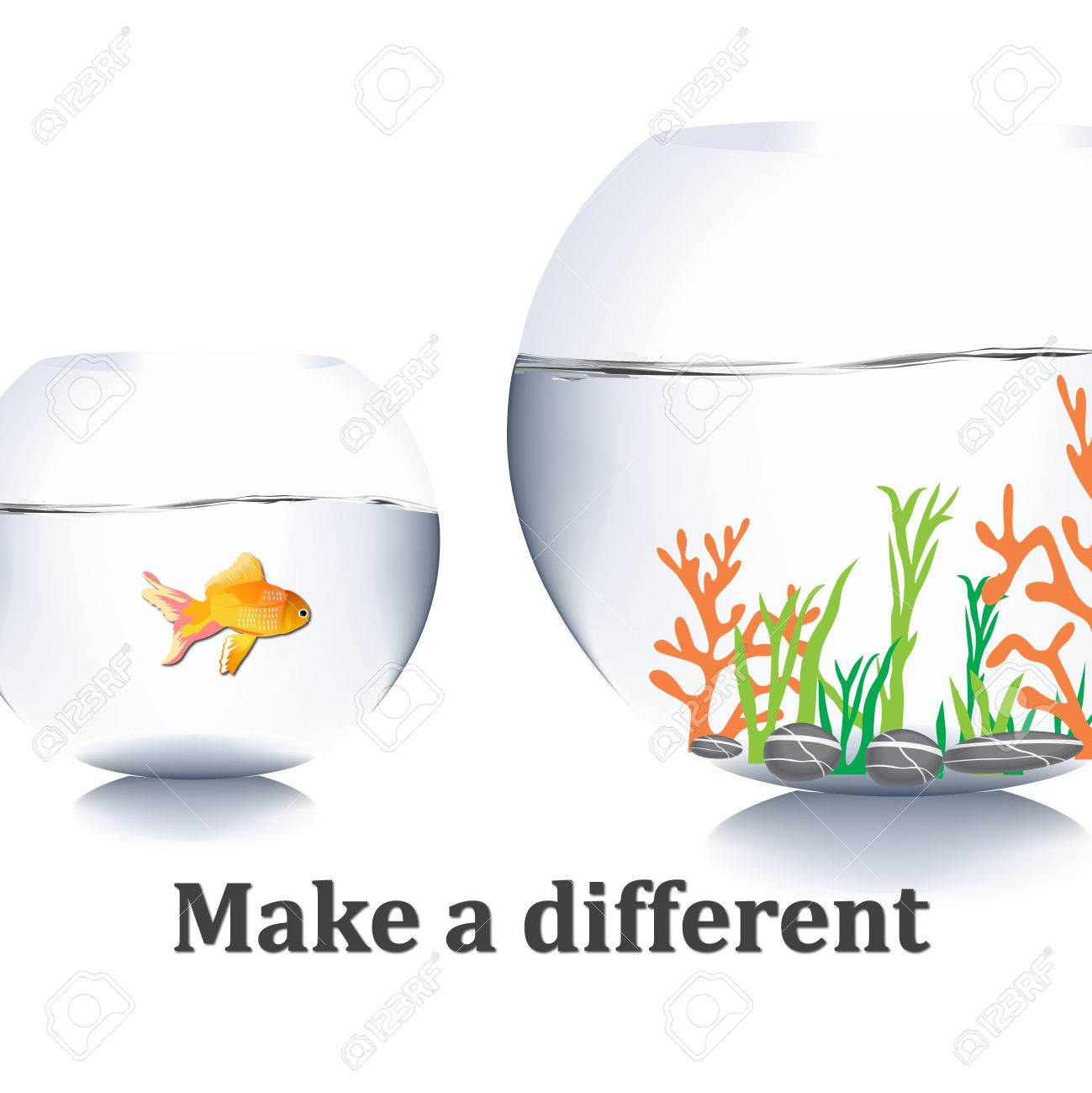 Fish Jump Out Of Water Stock Photo Picture And Royalty Free Image