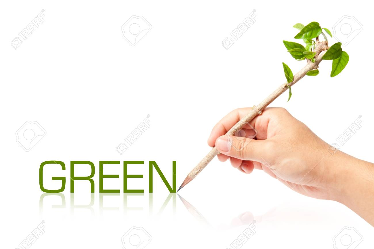 Green wording with creative of pencil with green tree on white backgorund Stock Photo - 13749122