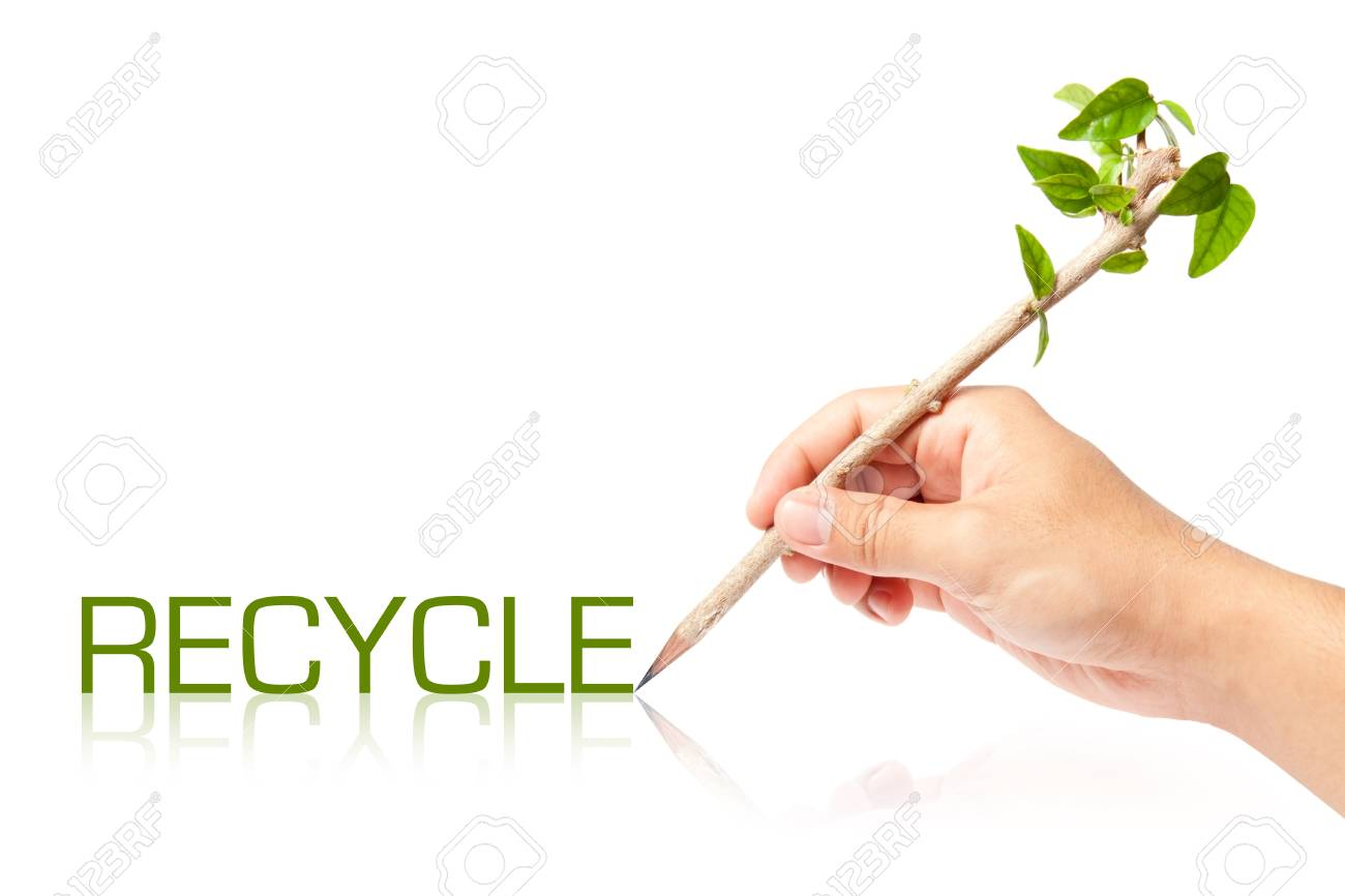 Recycle wording with creative pencil with green tree on white backgorund Stock Photo - 13749126
