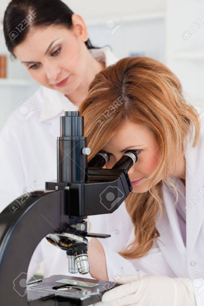 Cute scientist looking through a microscope with her assistant in a lab Stock Photo - 10206607